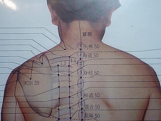 首から肩甲骨の間をヘアブラシ(少し柔らかいのがあればなおよし)で、トントン叩きましょう